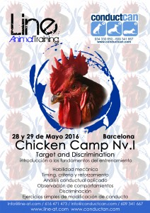 ChickenCamp conductcan2016